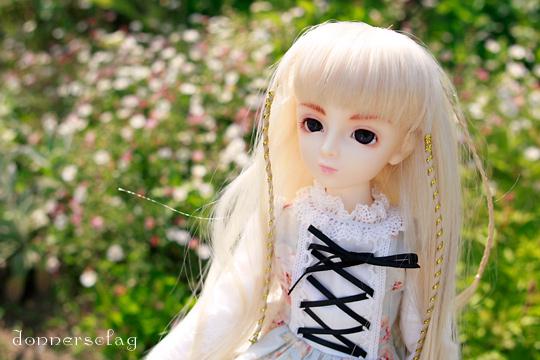 _MG_4100-3.jpg